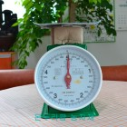 금성계기사 (지시저울)- 5kg
